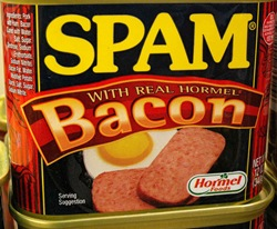 WordPressDirect: Spam, Dirty Spam